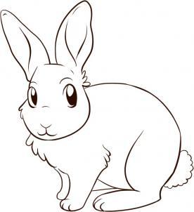 Як намалювати зайчика крок за кроком