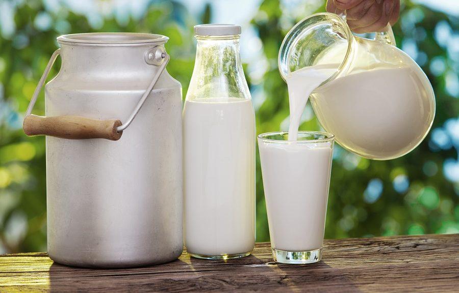 Чому скисає молоко