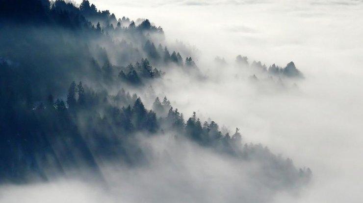 Що таке туман і чому він буває
