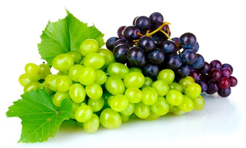 Цікаві факти про виноград