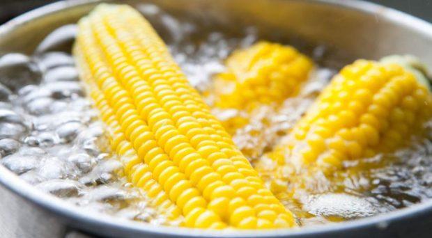 Цікаві факти про кукурудзу українською мовою