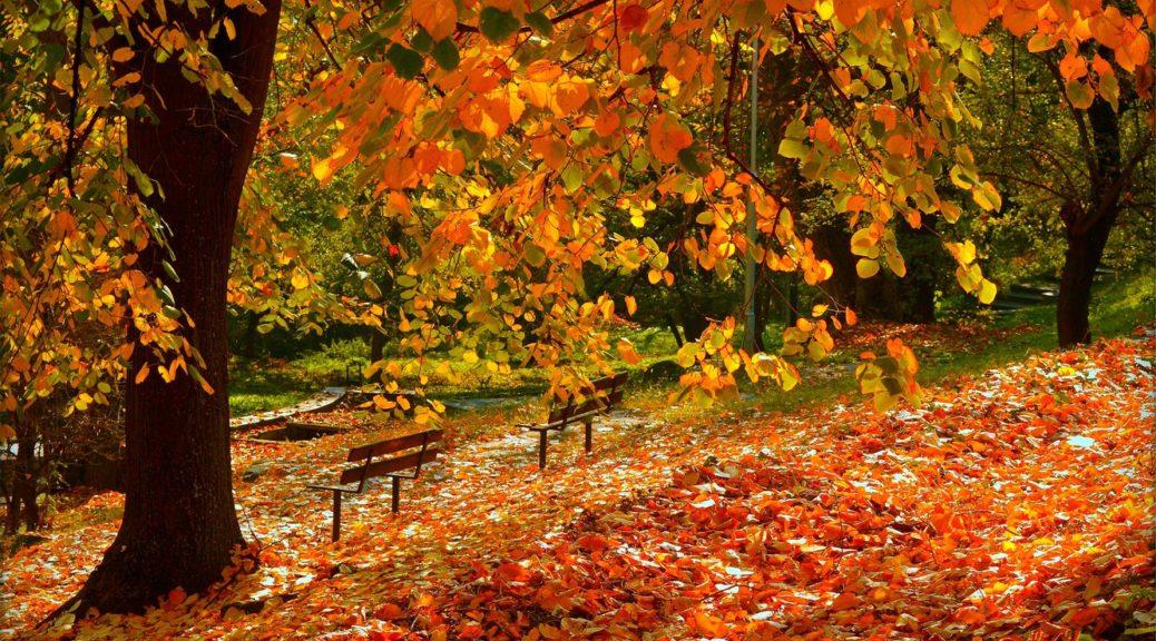 Твір на тему листопад